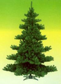 Basic Christmas Tree (STB014)