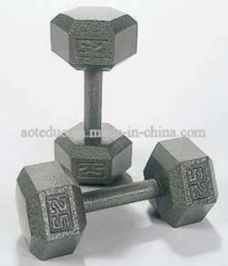 Fitness Equipment Dumbbell (OTD-F-DB)