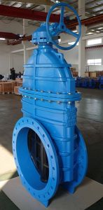 Resilient Seated Gate Valve En1074 F4 F4 BS5163 Awwac515 Awwac509 SABS664 SABS665 Pn16 250psi Flanged or Socket Gate Valve pictures & photos