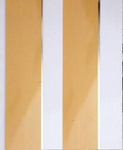 PVC Panel (20cm - R409) pictures & photos