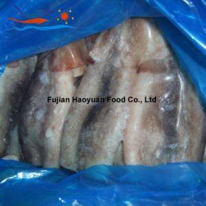 Best Frozen Seafood Squid pictures & photos