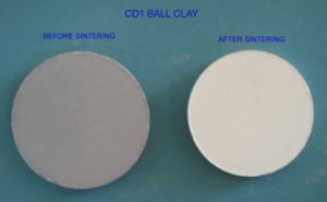 CD1 Ball Clay