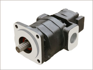 Parker/Commerical/Permco Gear Pump&Motor 350 pictures & photos
