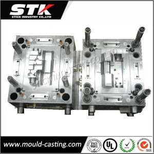 Professional Plastic Injection Mould and Die From China pictures & photos