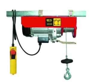 WT-300/600 Electric Hoist pictures & photos
