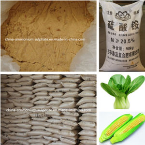 High Quality Ammonium Sulfate for Fertilizer in Promotion