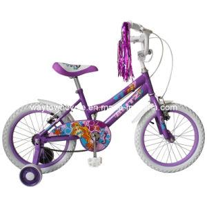 BMX Bike (WT-1234)