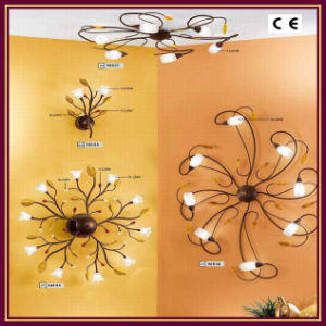 Interior Home Lighting, Wall Lamp, Ceiling Lamp (05-48)