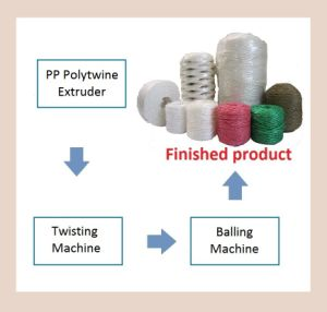 PP Polytwine Extruder pictures & photos