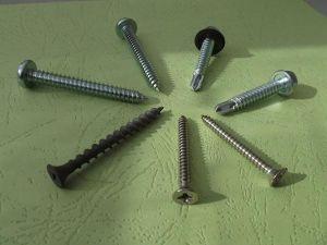 Carbon Steel Screws pictures & photos