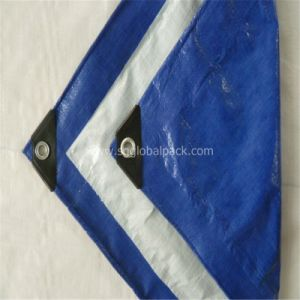 Royal Blue PE Tarpaulin Sheet pictures & photos