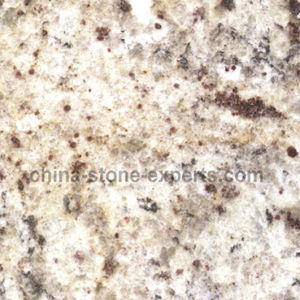 Giallo Ornamentale Granite Slab for Countertop and Vanity Top (YQG-GS1008) pictures & photos