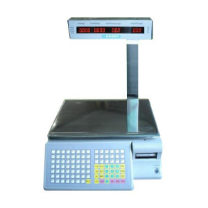 Electric Scale pictures & photos