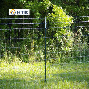 Cheap Galvanized Anping Prairie Field Fence