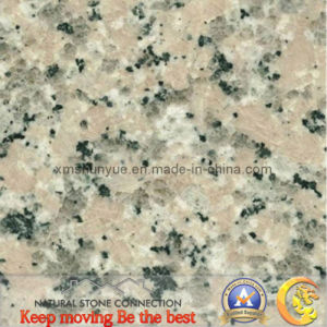Xili Red Granite Tile for Flooring/Wall or Countertops