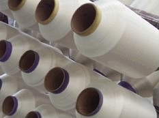Polyester Twisted Yarn (75D)