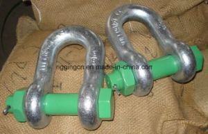 Forged Long D Shackle with safety Nut pictures & photos