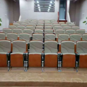 Cheap High Quality Conference Hall Seat, Auditorium Seat, Conference Hall Chairs Push Back,Plastic Auditorium Seat,Auditorium Seating,Auditorium Chair (R-6173) pictures & photos