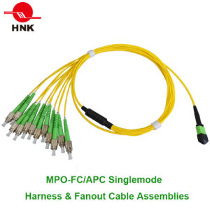 MPO Singlemode Multimode Fiber Optic Patch Cord pictures & photos