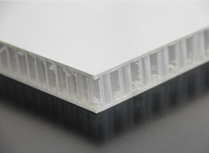 Grating /Decrotive Gratings/FRP Custom Molded Grating/Facade Panel pictures & photos