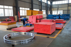 Slewing Ring Bearing-Rich Experience, High Quality Slewing Bearing Manufacturer pictures & photos