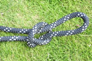 13mm Nylon Safety Rope for Rescue Industrial Belaying with En1891 pictures & photos