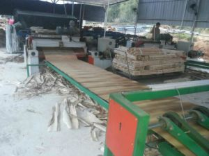 Good Quality 1.3 Meter Numerical Wood Veneer Peeling Machine pictures & photos