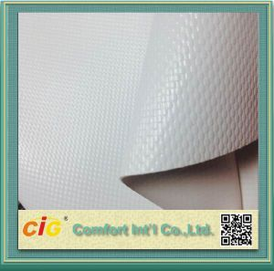 High Quality PVC Tarpaulin for Boat pictures & photos