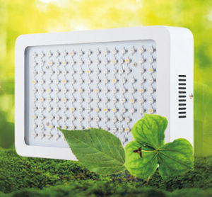 2016 New LED Grow Light Plant LED Grow Light for Flower pictures & photos