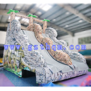 Inflatable Mini Water Slide Water Park/Giant Inflatable Water Slide for Adult pictures & photos