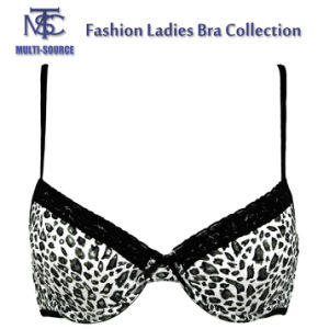 Leopard Print Black Lace Latest Fashion Sexy Bra