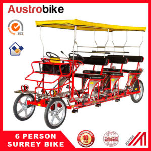 5 Person Bike with Baby Seat 8 Person Bike