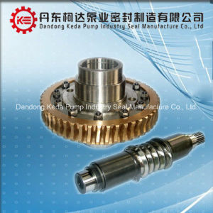 High-Precised Customized Worm and Gear