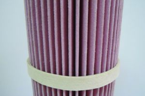 Nomex Air Filter Cartridge pictures & photos