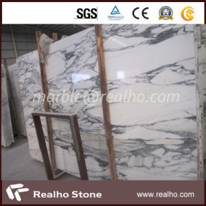 Imported Italy Polished White Arabescato Marble Slabs for Flooring/Wall/Countertops/Vanity Tops