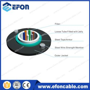 GYXTW 6 12 24 Cores Singlemode Armored Fiber Optical Cable pictures & photos
