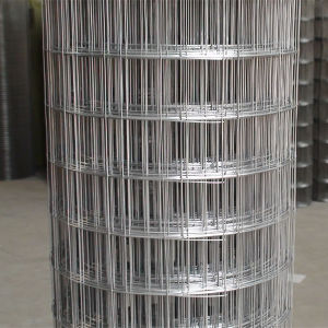 Square Hole Shape PVC Welded Wire Fabric Made in China pictures & photos
