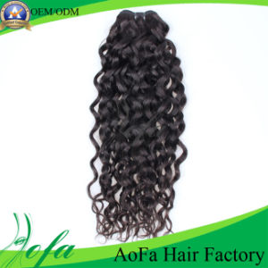 Factory Price Unprocessed Human Hair Remy Virgin Hair Weft pictures & photos