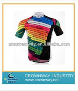 Colorful Mens Cycling Perfessional Jersey with High Quality (CW-S-CJ42) pictures & photos