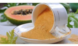 Nicepal Prue Natural Papaya / Pawpaw Fruit Powder pictures & photos