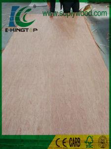 Bintangor Plywood BB/CC Grade 18mm for Dubai Market pictures & photos