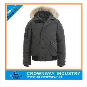 Best Unisex Junior Hooded Short Padded Jacket pictures & photos