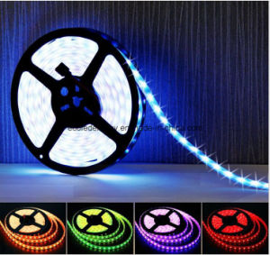 IP68 60SMD5050 14.4W/M White LED Strip pictures & photos