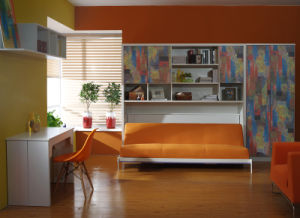Horizotal Tilting Sofa Bed with Functional Bookcase pictures & photos