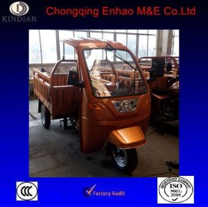 Prety Good Look Surface for 150cc Small Cargo Tricycle