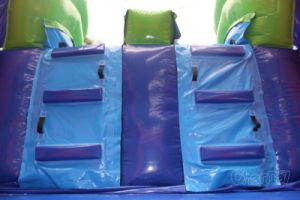 Inflatable Bounce House with Double Water Slide Chb708 pictures & photos