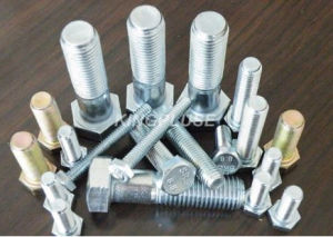 Hex Bolt, DIN/ ISO/ JIS/ Asme pictures & photos