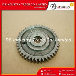 Diesel Engine Spare Parts Accessory Drive Gear 6CT 3415607 pictures & photos