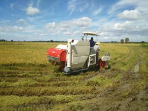 Combine Harvester for Rice\Wheat\Rape Seeds pictures & photos