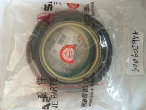 Bucket Cylinder Oil Seal for Top Brand Excavator pictures & photos